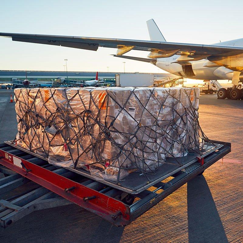 Tasman Cargo Services